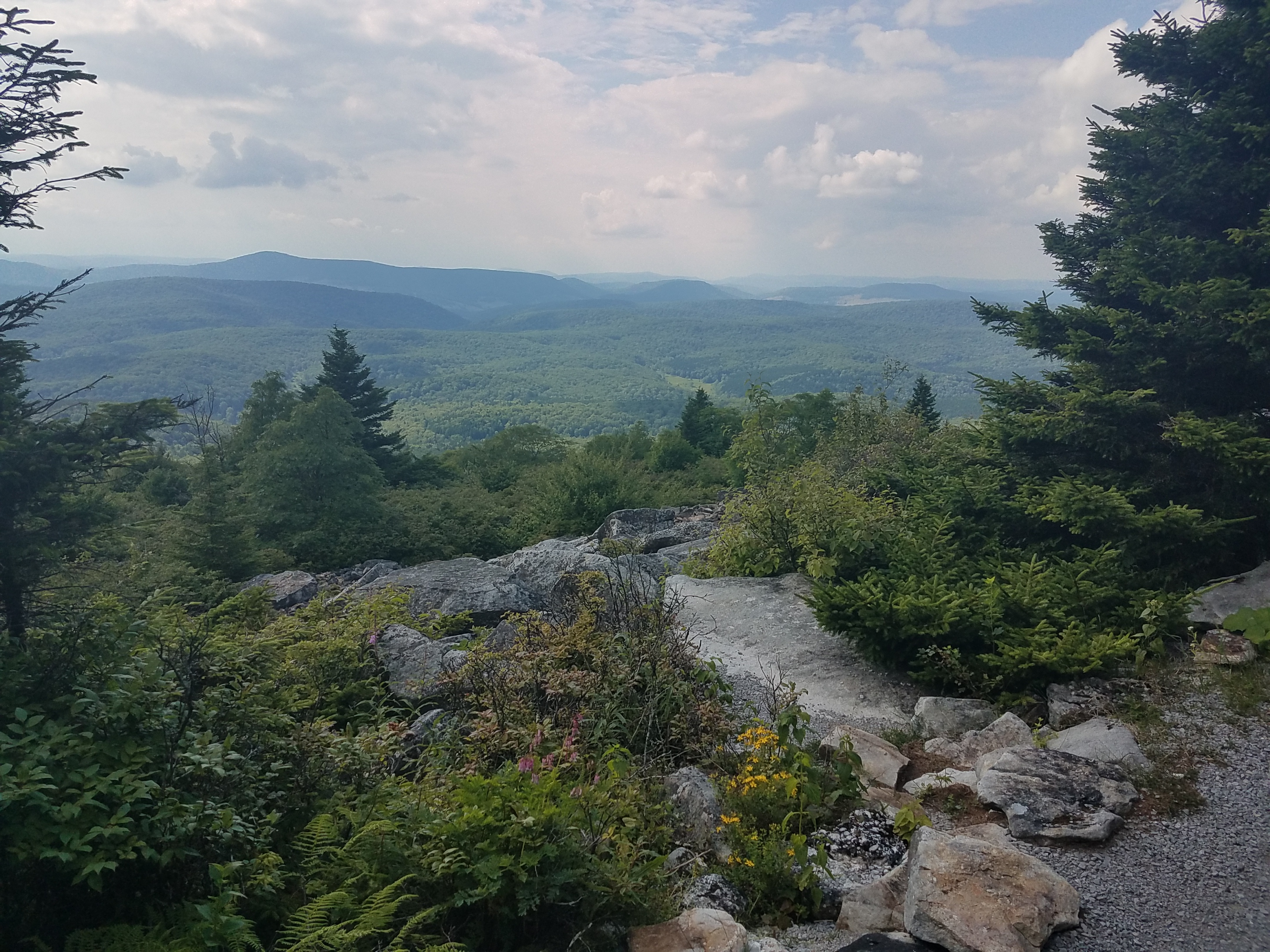 View from atop Spruce Knob, the tallest mountain in West Virginia